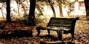 kursi dengan cat kayu cepat kering