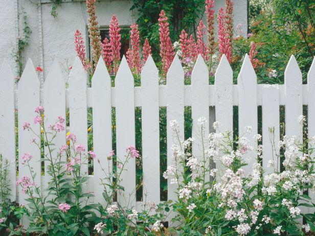 cara mengecat pagar kayu warna putih